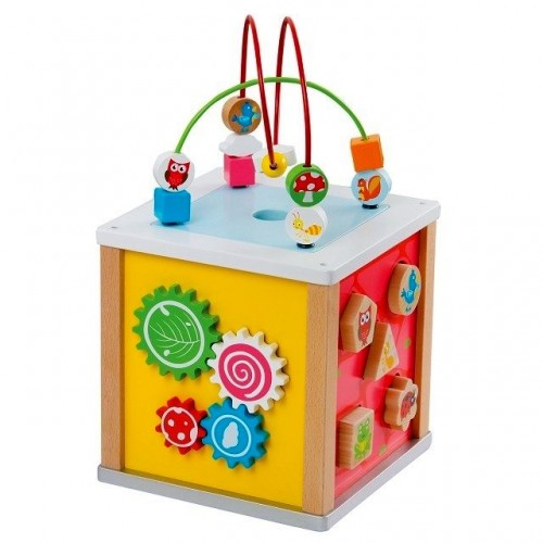 Cub cu 5 activitati - New Classic Toys