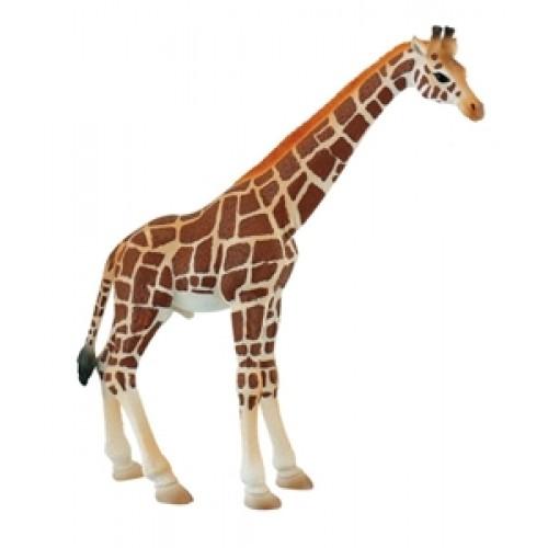 Girafa mascul - Bullyland