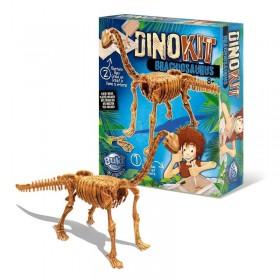Paleontologie - Dino Kit - Brachiosaurus - Buki