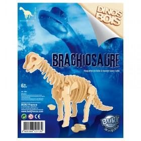 Paleontologie - Dinozaur din lemn Brachiosaurus - Buki