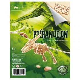 Paleontologie - Dinozaur din lemn Pteranodon - Buki