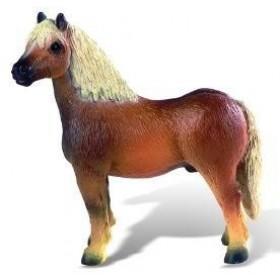 Cal Hafling Horse