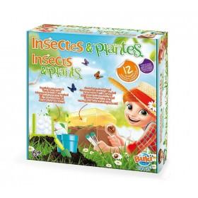Insecte si plante - 12 experimente - Buki