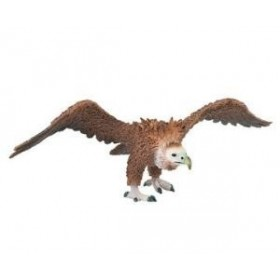 Vulturul negru
